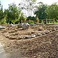 Rock_garden_after